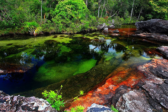 The_River_of_Five_Colours_Colombia